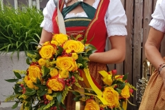 Abtenau06-2017-03