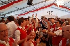 Abtenau06-2017-25